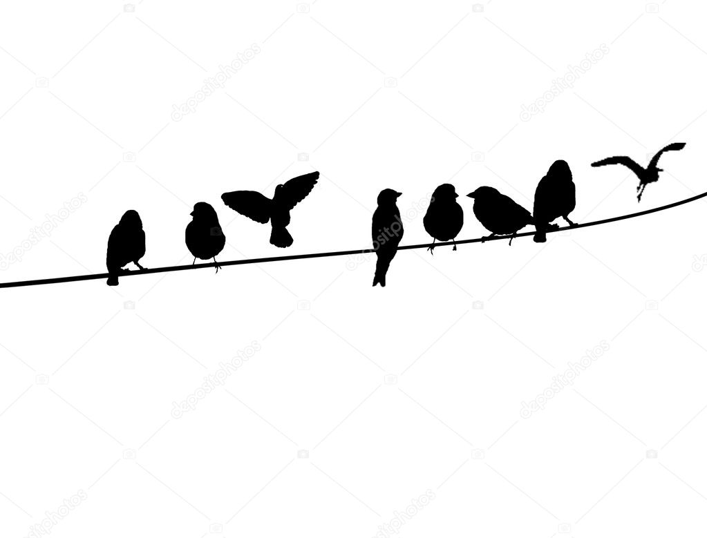 Birds on a telephone wire stock illustration
