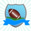 Royalty-Free Stock Vector Image: American football shield