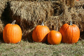 4 pumpkins in grass near hay bales — Stock Photo