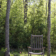 Garden chair with trees — Stock Photo