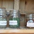 Garden herbs in jars — Stock Photo