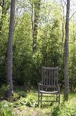 Trädgård stol med träd — Stockfoto