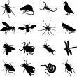 Royalty-Free Stock Vector Image: Insects