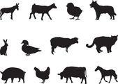 Animals — Cтоковый вектор