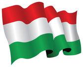 Hungary flag — Stock Photo