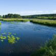 Tranquil river and the meadows — Stock Photo