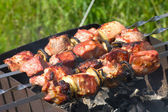 Shish-kebab on skewers — Stock Photo