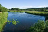 Lugna floden och ängarna — Stockfoto