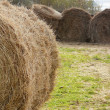Roll of straw or strawrick — Stock Photo