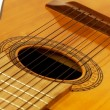 Stock Photo: Charango body