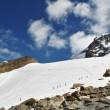 On garstelet glacier - Stock Photo