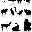 Animal silhouettes — Stock Vector #4805296