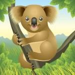 Koala — Stock Vector #4163305