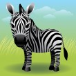 Zebra - Stock Vector