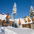 Stock Photo: Snow-covered house is in CarpathiMountains, Ukraine, Dragodra