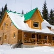Two-storeyed wooden house concealed by snow, Ukraine, Carpathian - Stock Photo