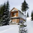 Two-storeyed wooden house concealed by snow, Ukraine, Carpathian — Stock Photo