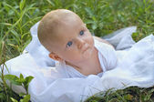 Boy in green grass — Stock Photo