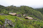 A traditional village in Papua — Stock Photo