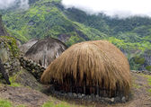 Traditional village in Papua — Stock Photo