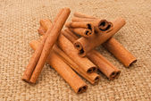 Cinnamon on a canopy — Stock Photo