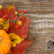 Autumn charm background with copy space — Stock Photo