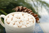 Hot Chocolate Cocoa with Marshmallows — Stock Photo