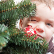 Small boy looks out for christmas tree — Stock fotografie