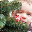 Noel ağacı için küçük çocuk bakıyor — Stok fotoğraf