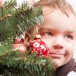 Foto Stock: Small boy looks out for christmas tree