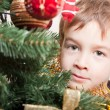 Boy looks out for the christmas treechristmas tree — Stock fotografie