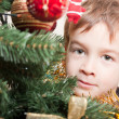 Boy looks out for the christmas treechristmas tree — ストック写真