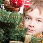 Noel treechristmas ağacı için çocuk bakıyor — Stok fotoğraf