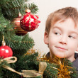 Boy looks out for the christmas treechristmas tree — Foto Stock