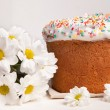 Easter cake and white flowers — Stock Photo #5138191