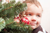 Small boy looks out for christmas tree — Stock Photo