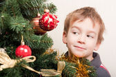 Boy looks out for the christmas treechristmas tree — Stock Photo