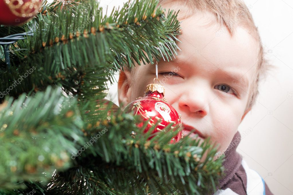 Little boy looks out for christmas tree  Stock Photo #5137658