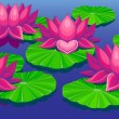 Lotuses — Stock Vector