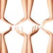 Human hands isolated — Stock Photo