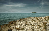 Adriatic sea's uninhabited island — Stock fotografie