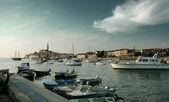 Adriatic sea's uninhabited island — Stock Photo