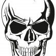 Human skull - Stock Vector