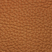 Piece of brown leather 2 — Stock Photo
