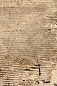 Grunge old textured cardboard sheet — ストック写真