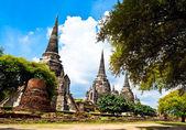 Pagoda in ayutthaya — Stock Photo