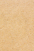 Surface sand texture — Stock Photo