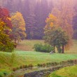 Foto Stock: Autumn landscape # 2