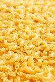 Macaroni # 1 — Photo