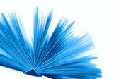 本蓝色的书 — 图库照片